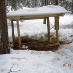Utfodring av vilt – Ett välbesökt utfordringsställe för rådjur och harar nära Stomröddingen 2012-13