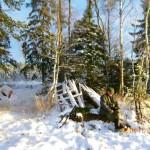 Vinterjakt – På pass vid Missjön