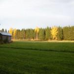 """Höstfagert på Robert A:s """"Hitreänge"""""""
