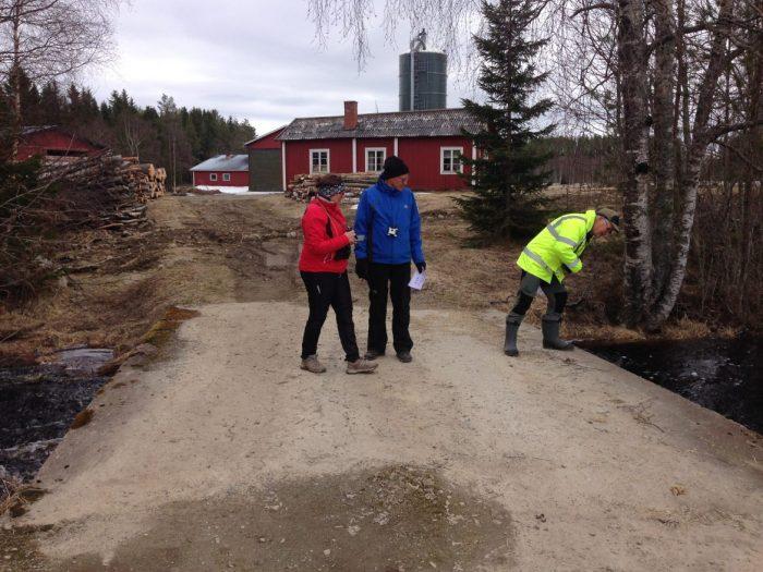Gunilla H, Torsten och Sven-Olov P tittar visst efter Strömstaren
