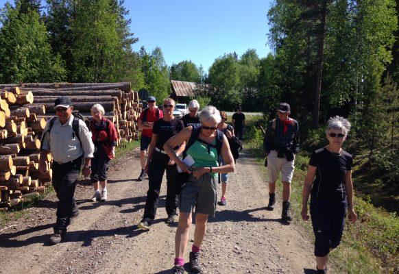 Turistföreningen Skellefteå