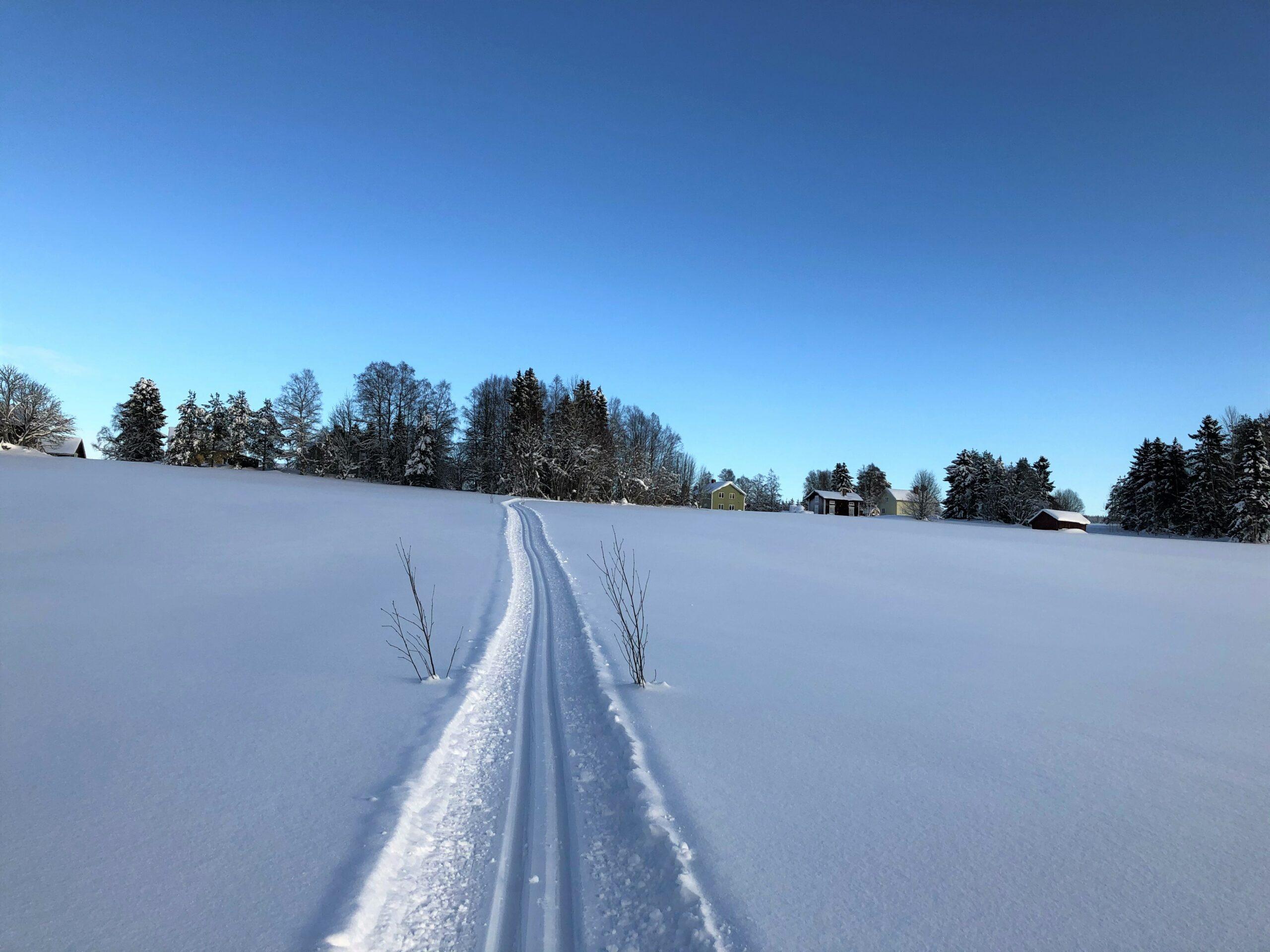 Vinter på Backen