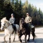Hästar – Ridning passar både gammal och ung.